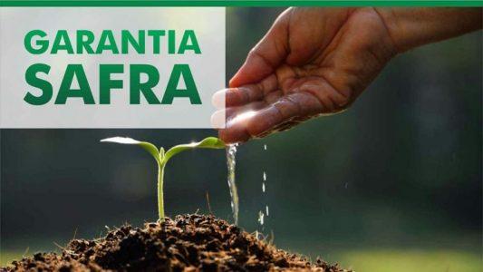 Campo Formoso: Garantia Safra poderá ser pago em dezembro, diz representante da prefeitura