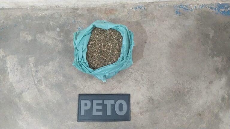 Campo Formoso: PM apreende quantidade de maconha na localidade de Poços da Pedra